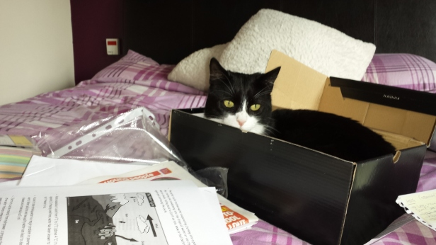 in-the-box
